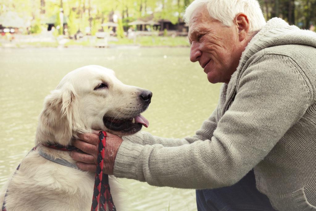 Vanha mies ulkoiluttaa koiraa hoivapalvelun aikana